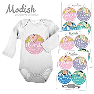 12 Monthly Baby Stickers, Tribal, Flowers, Feathers, Arrows, Girl, Baby Belly Stickers, Monthly Onesie Stickers, Baby Month Stickers, Arrows, Flowers, Tribal, Pink, Mint, Purple, Teal, Blue, Girl 27