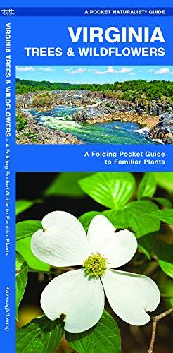 dflowers: A Folding Pocket Guide to Familiar Plants (Pocket Naturalist Guides) ()