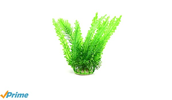 Amazon.com : uxcell Green Plastic Plant Aquarium Fishbowl Waterscape Decor Ornament for Aquatic Pets Goldfish : Pet Supplies