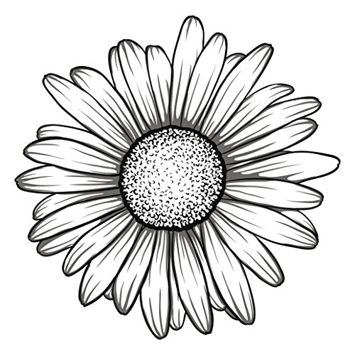 Black and White Gerbera Gerber Daisy Flower Vinyl Decal Sticker (4