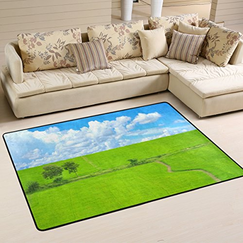 XiangHeFu Personalized Area Rugs Blue Sky Green Glass 3'x2' (36x24 Inches) Floor Doormats Mat Soft for Living Room Bedroom Home Kitchen Decorative