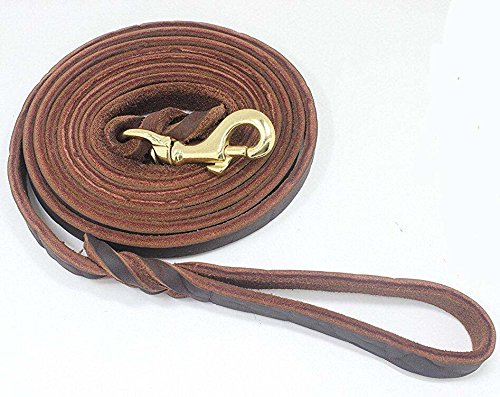 Dog Care Training Lead Handmade Braided 8.5 Foot Leather Pet Leash, Small Size, Brown by DOG CARE