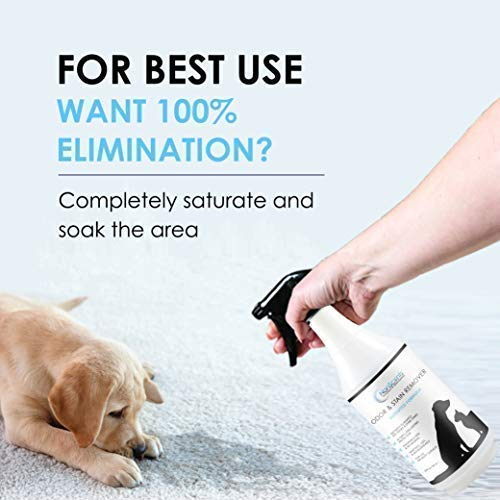 NonScents Pet & Stain - Stain Odor Eliminator for and Cat Urine