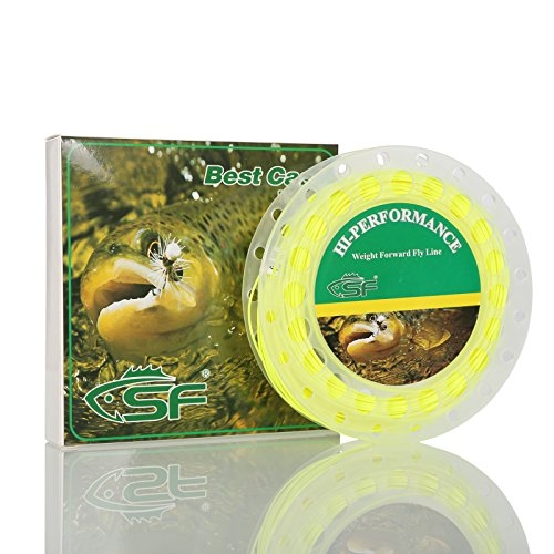 oating Fly Fishing Line Welded Loop Fluro Yellow 100FT WF10F ()