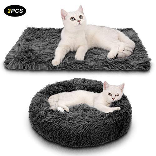 Nouveau cousin et mini tapis pour nos 3 chats.