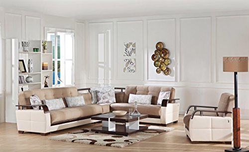 Natural Sectional Sofa Naomi L. Brown free curbside delivery in Continental US