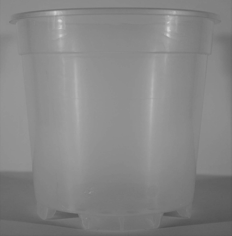 Vase en Plastique Transparent est id/éal pour Les orchid/ées 19 CM de diam/ètre