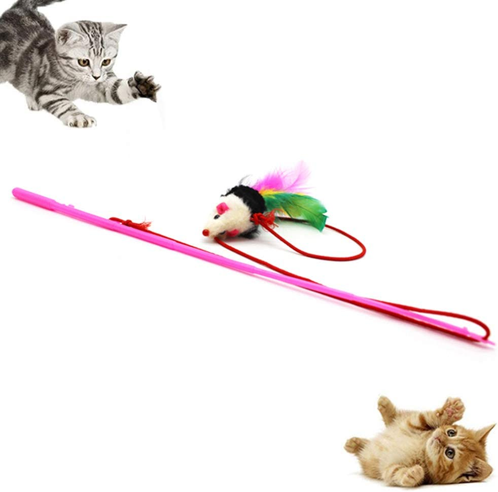 Ukallaite Funny Pet Cat Toys Interactive /& Funny Pet Cat Teaser Mouse Shape Feather Fishing Rod Stick Interactive Play Toy