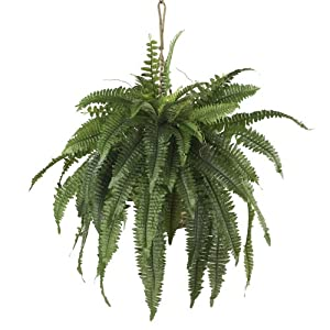 Nearly Natural 6774 Boston Fern Hanging Basket, Large, Green 26