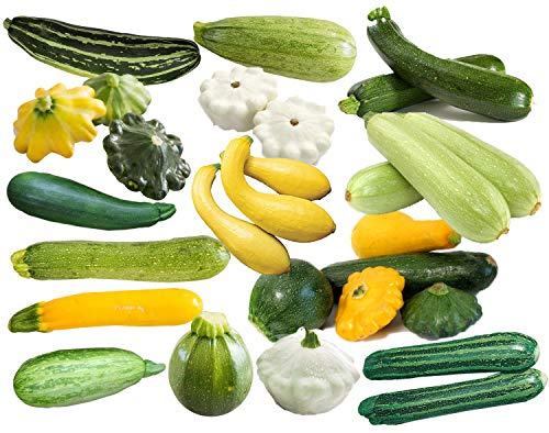 (50+ Zucchini and Squash Mix Seeds ORGANICALLY Grown 12 Varieties Non-GMO Delicious and Healthy, Grown in USA. Rare, Super Profilic and Delicious! )