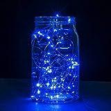 Nufelans 3m 30 LED Waterproof Lights String Starry Fairy Lights Decorative Lights for Patio, Garden, Wedding Multicolor (Blue)