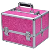 Large Professional Aluminum Pro Train Cosmetic Makeup Artist Case Pink Box, Bags Central