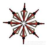 12 pack Arrow Broadheads 3 Blades Archery Arrow Heads Tips 100 Grains