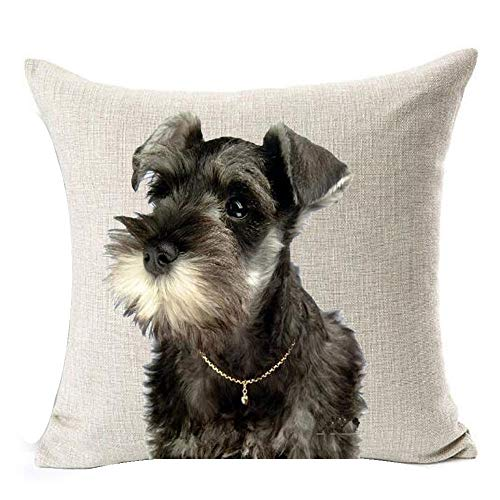 (Painting Cute Lovely Animals Pet Dog Big Eyes Black Schnauzer Cotton Linen Square Throw Waist Pillow Case Decorative Cushion Cover Pillowcase Sofa 18