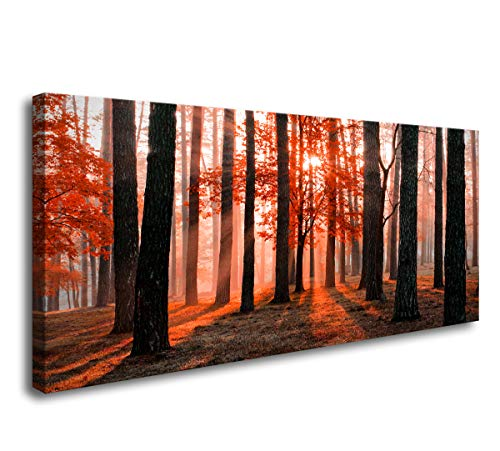 Cao Gen Decor Art-H42462Wall Art Red Trees Canvas Prints Beautiful Morning Scene in The Red Forest with Sun Rays and Long Shadows Pictures Painting for Office Home Decorations Artwork