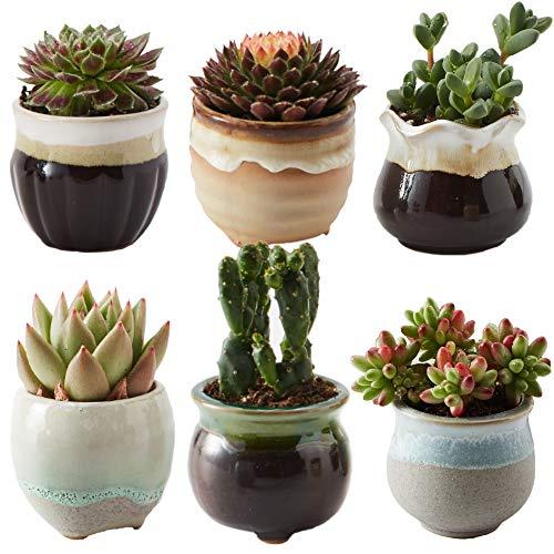 (SUN-E 6 in Set 2.5 Inch Ceramic Flowing Glaze Black&White Base Serial Set Succulent Plant Pot Cactus Plant Pot Flower Pot Container Planter Idea )