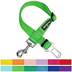 Blueberry Pet 12 Colors Classic Dog Seat Belt Tether for Dogs Cats, Neon Green, Durable Safety Car Vehicle Seatbelts Leads Use with Harness