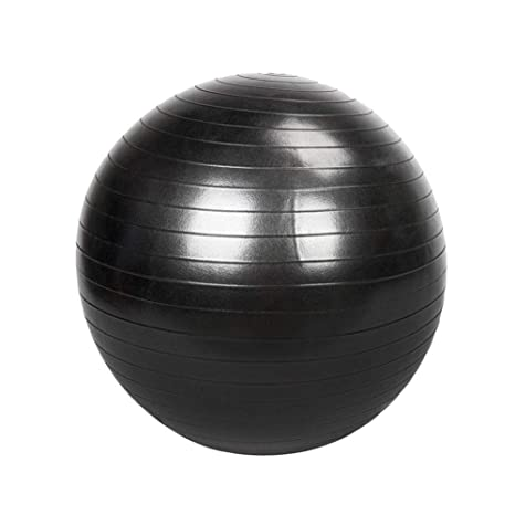 Amazon.com: Swanluck Exercise Ball, Stability and Yoga Ball ...