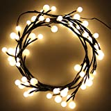 LED-Light Fence String Bulbs Christmas DIY Ball 72 LED 2.5M Plant Style Warm White