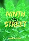 Ninth Street (Welsh Edition)