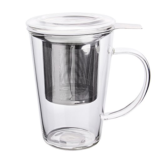 Enindel Fashion Simple Style Glass Tea Mug with Infuser and Lid, Tea Cup, 14 OZ