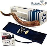 HalleluYAH Shofar Set – Half Polished 24''-28'' Kudu Horn Shofar – Traditional Ancient Musical Instrument For Jewish Spiritual Ceremonies And Religious Sermons – Authentic Curved Design Made In Israel