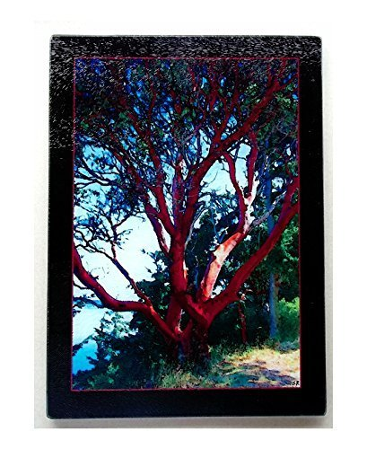 - Madrona glass cutting board size 11.25 X 7.875 inches