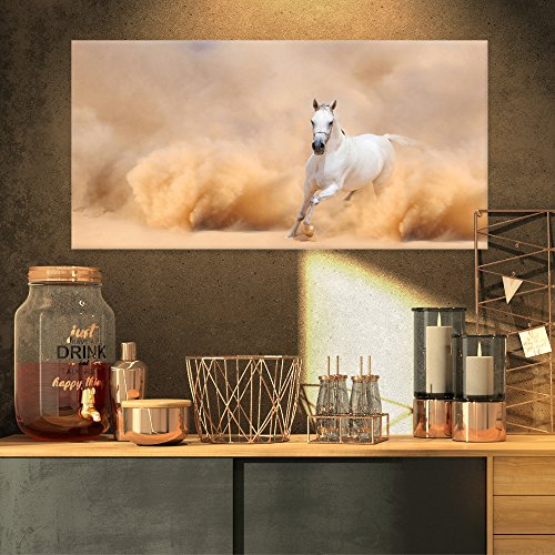Arabian Horse in Desert Storm Photography on Canvas Art Wall Photgraphy Artwork Print by Design Art