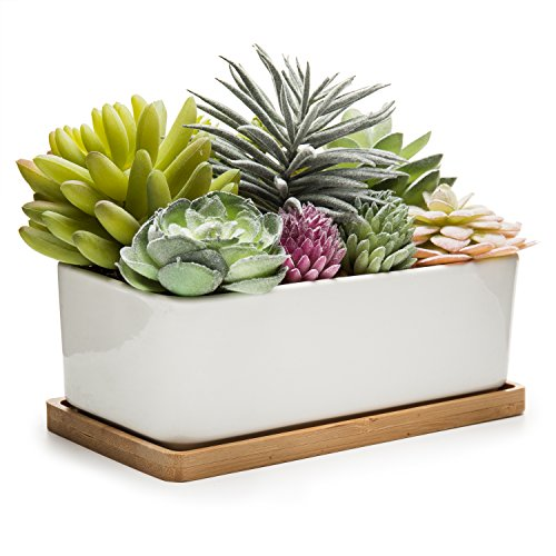 MyGift Potted Artificial Succulents in Ceramic Pot with Bamboo Tray by MyGift