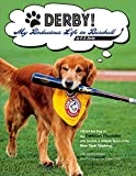 img - for DERBY! - My Bodacious Life in Baseball by H.R. Derby: Bat Dog of the Trenton Thunder (the Double-A Affiliate Team of the Yankees) book / textbook / text book
