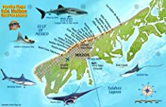 Perfect for divers, snorkelers and nature lovers! Side One is a mini-map of Isla Holbox in Quintana Roo, Mexico. Side Two is a fish identification guide with more than 80 species illustrated. This convenient, waterproof reference is made of h...