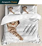 VROSELV-HOME Full Queen Duvet Cover Sets,Box Stitched,Soft,Breathable,Hypoallergenic,Fade Resistant Kids Bedding-Does Not Shrink Or Wrinkle-Animal Funny Cat in Wallpaper Hole (87' W x 95' L)