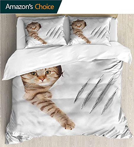 VROSELV-HOME Full/Queen Size Quilt Bedding Set,Box Stitched,Soft,Breathable,Hypoallergenic,Fade Resistant Kids Bedding -Double Brushed Microfiber -Animal Funny Cat in Wallpaper Hole (90