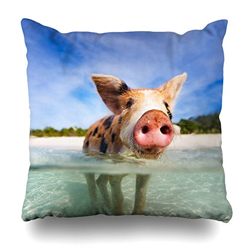 - ONELZ Little Pig in The Sea Square Decorative Throw Case, Fashion Style Zippered Cover (16X16 inch)