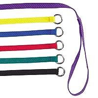 Guardian Gear - Dije para perrera de nylon, 6 pies, paquete de 6, los colores varían