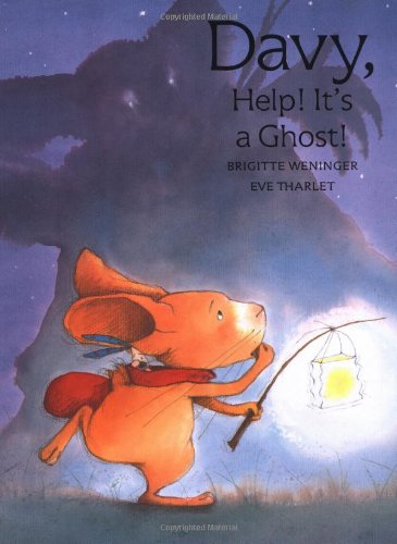 Davy, Help! It's a Ghost! ebook