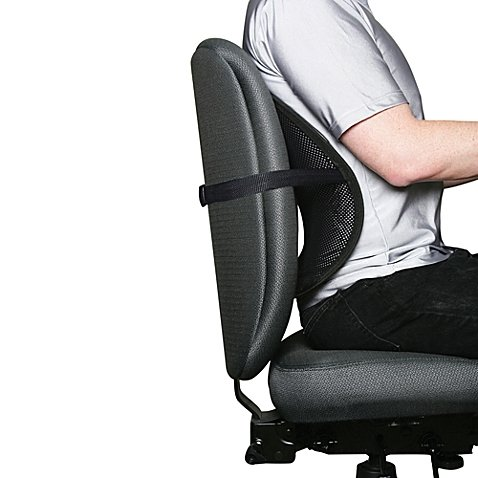 Kiss My Back! Ergonomic Mesh Back Support | Features Adjustable Buckle and Nylon straps that Easily Fits Car Seats, Office, and Kitchen Chairs (1)