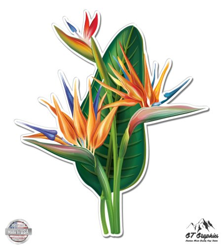 GT Graphics Bird of Paradise Flower - 3