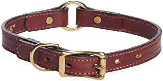 product image for Mendota Pet Leather Hunt Collar - Dog Collar - Made in The USA
