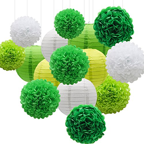 KAXIXI Hanging Party Decorations Set, 15pcs Green White Paper Flowers Pom Poms Balls and Paper Lanterns for Wedding Birthday Bridal Baby Shower Graduation