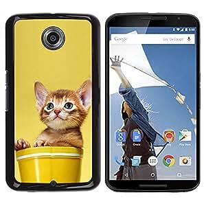 Caucho caso de Shell duro de la cubierta de accesorios de protección BY RAYDREAMMM - Motorola NEXUS 6 / X / Moto X Pro - Cute Cat Kitten In A Pot