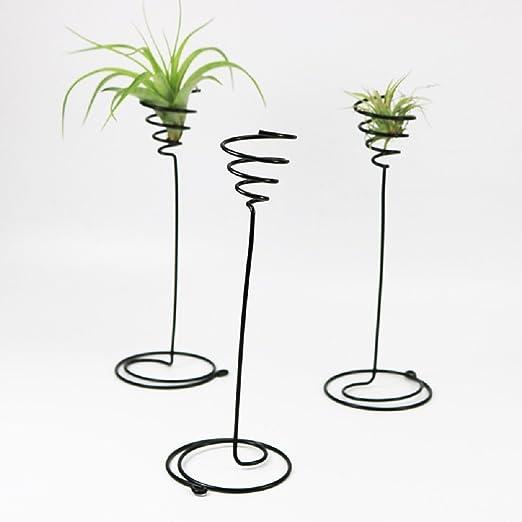 Pack de 3 pequeños soportes para plantas de aire para macetas ...