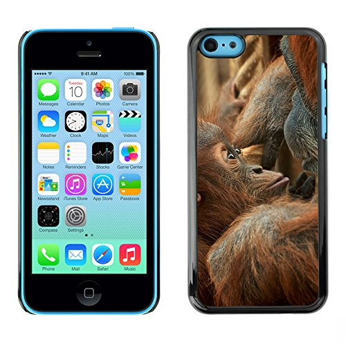 Premio Sottile Slim Cassa Custodia Case Cover Shell // F00007662 bébé singe // Apple iPhone 5C