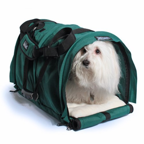 Sturdibag Large Divided Pet Travel Carrier Carry 2 Pets in 1 Carrier, Airline,aaa Approved Pet Travel Carrier Tote, Size Large 18''l X 12''w X 12''h (Prior to Flexing Down) (Evergreen)