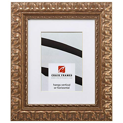 - Craig Frames Bravado Ornate, 20 x 26 Inch Antique Bronze Picture Frame Matted to Display a 16 x 22 Inch Photo