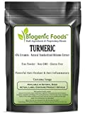 Turmeric - 45% Circumin - Natural Standardized Rhizome Fine Powder Extract (Curcuma Longa), 1 kg