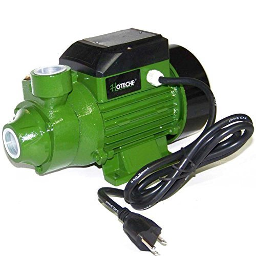 3/4 Hp Centrifugal Electric Water Pump Pool Farm Pond Biodiesel Hoteche 1