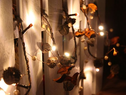 Battery Operated Warm White LED String Lights with Acorn, Christmas Lights, Party Lights