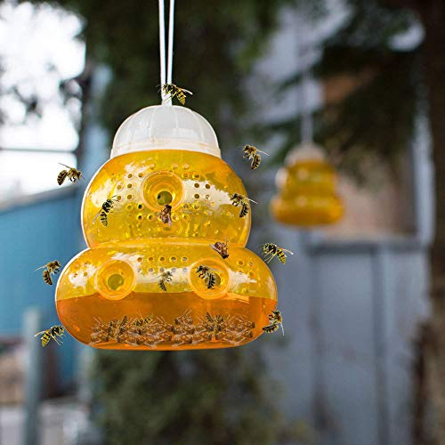 MatureGirl Wasp Fly Trap - Fly Catcher Trap - Bee Catcher - Insects Hanging Trap - Fly Bait - Wasp Fly Flies Bee Insects Hanging Trap Catcher Killer No Poison Flying Killer (Yellow) -