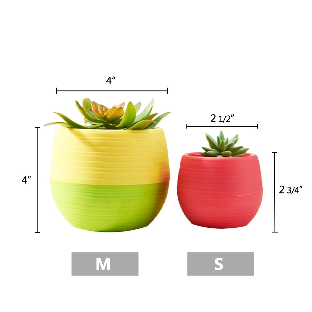 Mkono 4 Inch Small Succulent Planter Colorful Plastic Plant Flower Pots Set of 5, Mixed Color by Mkono